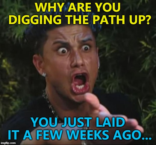 More joined up thinking from my local authority... :) | WHY ARE YOU DIGGING THE PATH UP? YOU JUST LAID IT A FEW WEEKS AGO... | image tagged in memes,dj pauly d | made w/ Imgflip meme maker