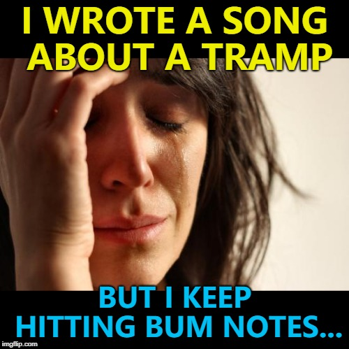It's super... :) | I WROTE A SONG ABOUT A TRAMP BUT I KEEP HITTING BUM NOTES... | image tagged in memes,first world problems,music,tramps | made w/ Imgflip meme maker