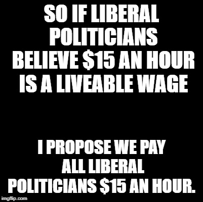 Anything more, and they are just being greedy Capitalists | SO IF LIBERAL POLITICIANS BELIEVE $15 AN HOUR IS A LIVEABLE WAGE I PROPOSE WE PAY ALL LIBERAL POLITICIANS $15 AN HOUR. | image tagged in blank,politics,liberals,liberal hypocrisy,liberal vs conservative,stupid liberals | made w/ Imgflip meme maker