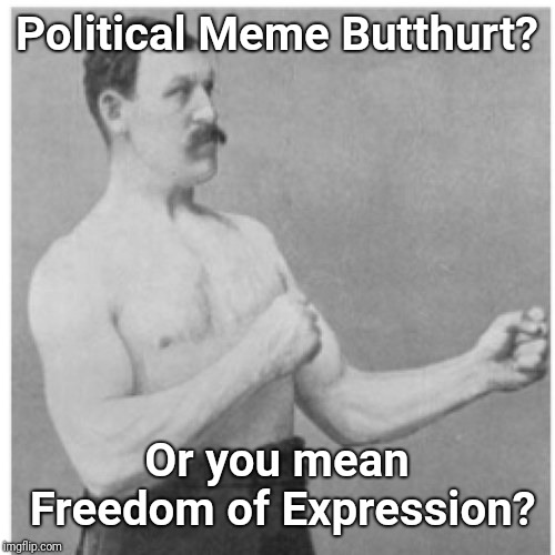 Triggered Meme Reader  | Political Meme Butthurt? Or you mean Freedom of Expression? | image tagged in memes,overly manly man,triggered,snowflakes,justjeff,freedom of speech | made w/ Imgflip meme maker