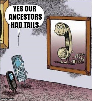 times have changed | YES OUR ANCESTORS HAD TAILS | image tagged in phones,dial | made w/ Imgflip meme maker