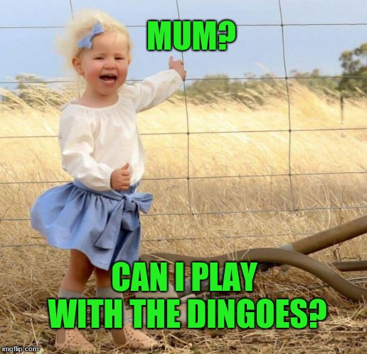 Inspired by an old Far Side card. | MUM? CAN I PLAY WITH THE DINGOES? | image tagged in australia,memes,gary larson,mad dog | made w/ Imgflip meme maker