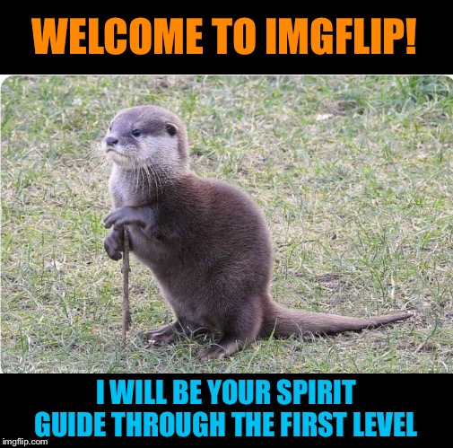 You otter follow him | WELCOME TO IMGFLIP! I WILL BE YOUR SPIRIT GUIDE THROUGH THE FIRST LEVEL | image tagged in imgflip,meme,spirit animal,otter,funny animals | made w/ Imgflip meme maker