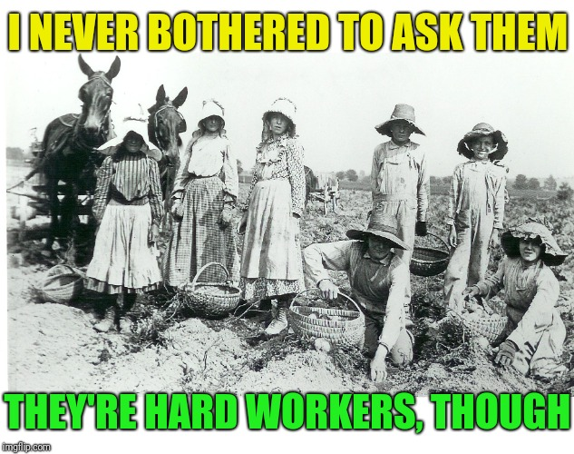 I NEVER BOTHERED TO ASK THEM THEY'RE HARD WORKERS, THOUGH | made w/ Imgflip meme maker