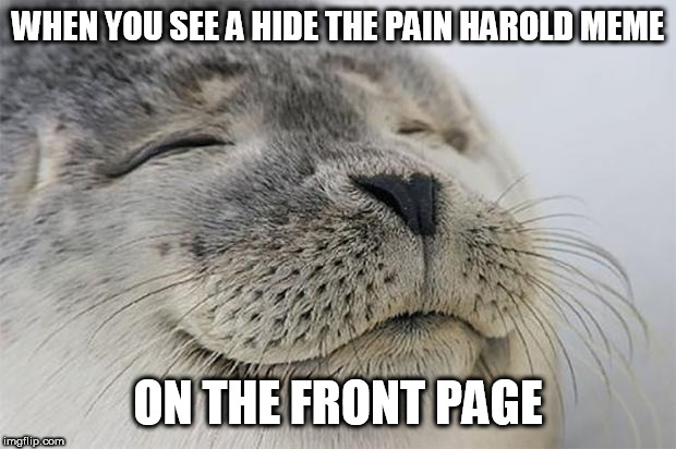 Is it me or has there been a lot of those making the front page for the past while? | WHEN YOU SEE A HIDE THE PAIN HAROLD MEME ON THE FRONT PAGE | image tagged in memes,satisfied seal,hide the pain harold,imgflip | made w/ Imgflip meme maker