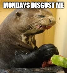 Disgusted Otter | MONDAYS DISGUST ME | image tagged in disgusted otter | made w/ Imgflip meme maker