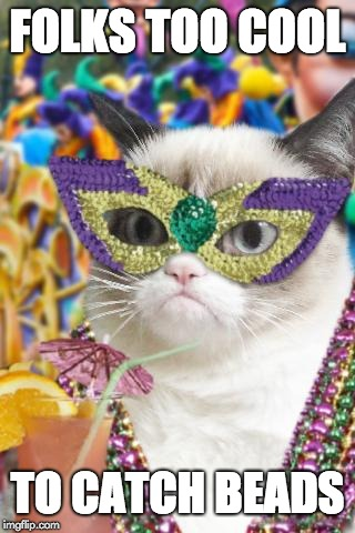 Don't be this guy | FOLKS TOO COOL TO CATCH BEADS | image tagged in mardi gras cat,mardi gras,beads,grumpy cat,funny cats,new orleans | made w/ Imgflip meme maker