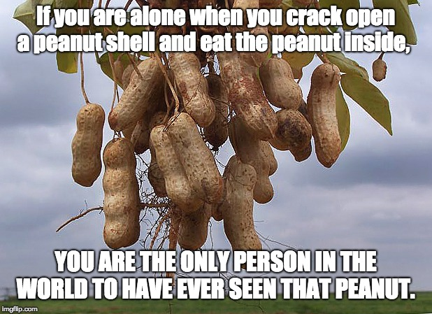 If you are alone when you crack open a peanut shell and eat the peanut inside, YOU ARE THE ONLY PERSON IN THE WORLD TO HAVE EVER SEEN THAT P | image tagged in peanuts,farmers,farm | made w/ Imgflip meme maker