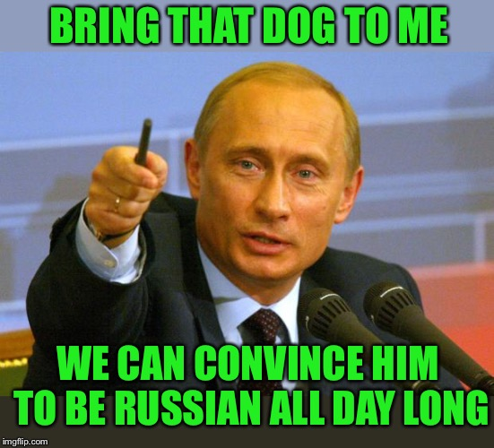 Good Guy Putin Meme | BRING THAT DOG TO ME WE CAN CONVINCE HIM TO BE RUSSIAN ALL DAY LONG | image tagged in memes,good guy putin | made w/ Imgflip meme maker