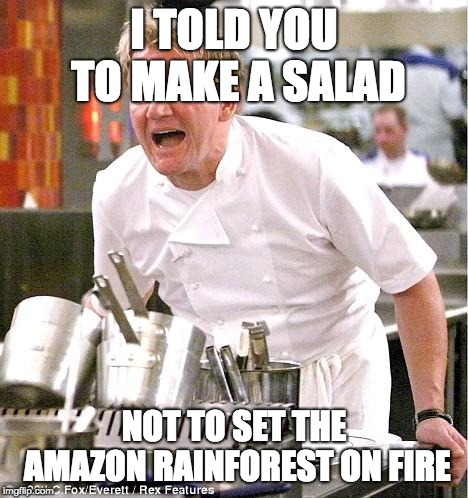 Chef Gordon Ramsay Meme | I TOLD YOU TO MAKE A SALAD NOT TO SET THE AMAZON RAINFOREST ON FIRE | image tagged in memes,chef gordon ramsay | made w/ Imgflip meme maker