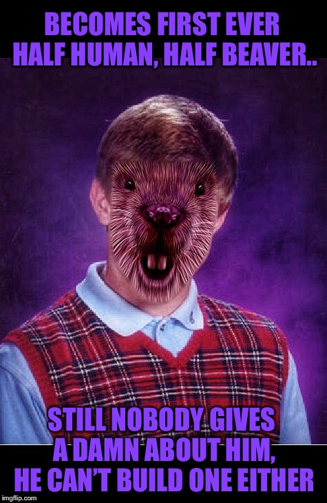 Brian the Bad Luck Beaver | BECOMES FIRST EVER HALF HUMAN, HALF BEAVER.. STILL NOBODY GIVES A DAMN ABOUT HIM, HE CAN'T BUILD ONE EITHER | image tagged in memes,bad luck beaver brian,bad luck brian,funny animals,damn you,bad luck | made w/ Imgflip meme maker