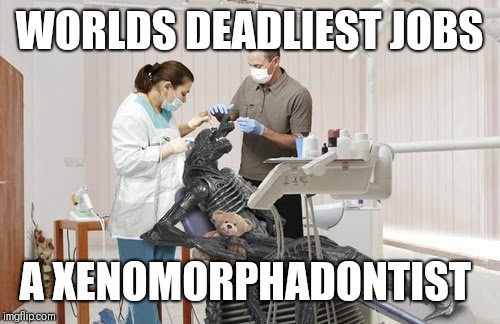 WORLDS DEADLIEST JOBS A XENOMORPHADONTIST | image tagged in alien | made w/ Imgflip meme maker