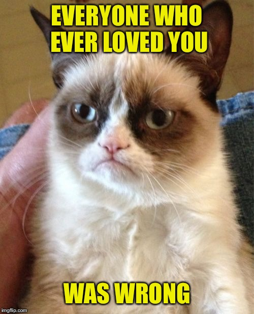 Grumpy Cat Meme | EVERYONE WHO EVER LOVED YOU WAS WRONG | image tagged in memes,grumpy cat | made w/ Imgflip meme maker