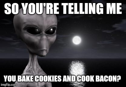 Why aliens won't Talk To Us | SO YOU'RE TELLING ME YOU BAKE COOKIES AND COOK BACON? | image tagged in why aliens won't talk to us | made w/ Imgflip meme maker