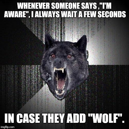 "Insanity Wolf Meme | WHENEVER SOMEONE SAYS ,""I'M AWARE"", I ALWAYS WAIT A FEW SECONDS IN CASE THEY ADD ""WOLF"". 