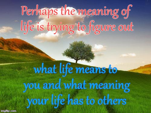 Meaning of Life | Perhaps the meaning of life is trying to figure out what life means to you and what meaning your life has to others | image tagged in beautiful life,inspiring,inspirational quote,meaning of life,inspire the people | made w/ Imgflip meme maker