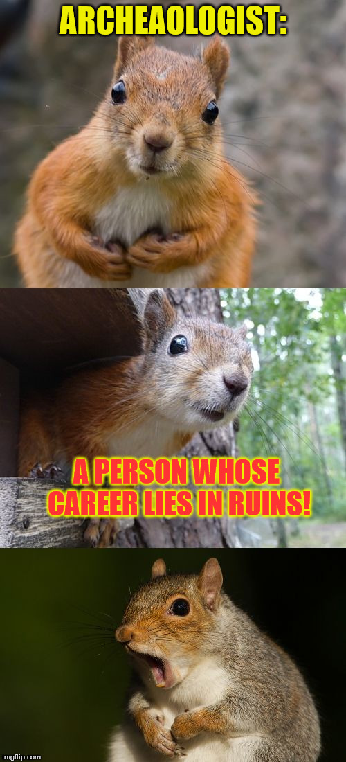 I PUN you not! | ARCHEAOLOGIST: A PERSON WHOSE CAREER LIES IN RUINS! | image tagged in bad pun squirrel,ruin,bad joke,bad jokes,squirrel | made w/ Imgflip meme maker