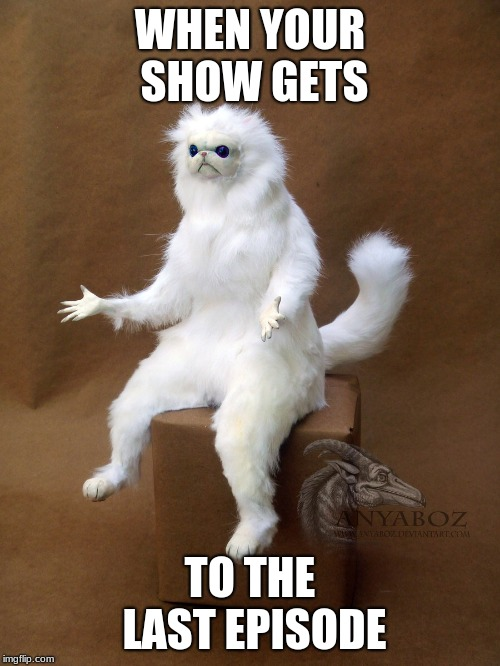 Persian Cat Room Guardian Single Meme | WHEN YOUR SHOW GETS TO THE LAST EPISODE | image tagged in memes,persian cat room guardian single | made w/ Imgflip meme maker