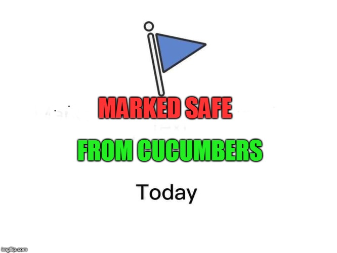Marked safe from | MARKED SAFE FROM CUCUMBERS | image tagged in marked safe from | made w/ Imgflip meme maker