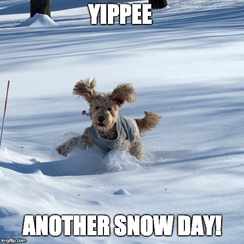 More snow | YIPPEE ANOTHER SNOW DAY! | image tagged in snow,winter is here,minnesota | made w/ Imgflip meme maker