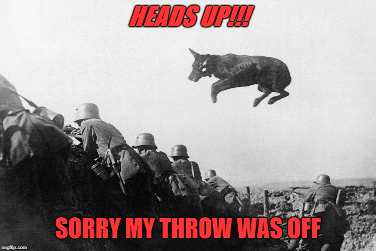 HEADS UP!!! SORRY MY THROW WAS OFF | made w/ Imgflip meme maker