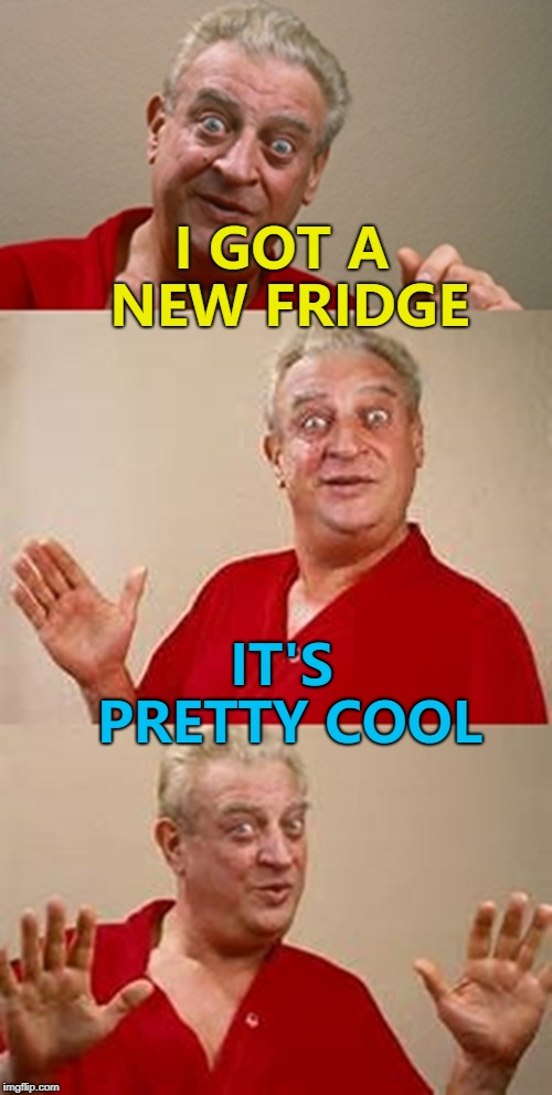 I want to get reincarnated as a fridge - then I'd always be chillin'... :) | I GOT A NEW FRIDGE IT'S PRETTY COOL | image tagged in bad pun dangerfield,memes | made w/ Imgflip meme maker