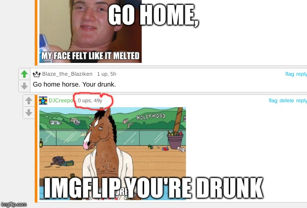 Looks like it has been 49 years I commented on a 5 hour comment | GO HOME, IMGFLIP YOU'RE DRUNK | image tagged in memes,meanwhile on imgflip,go home youre drunk,bojack horseman | made w/ Imgflip meme maker