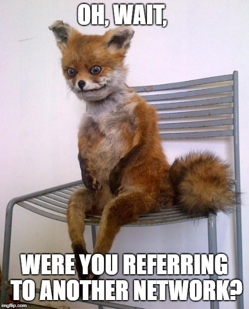 Stoned Fox | OH, WAIT, WERE YOU REFERRING TO ANOTHER NETWORK? | image tagged in stoned fox | made w/ Imgflip meme maker