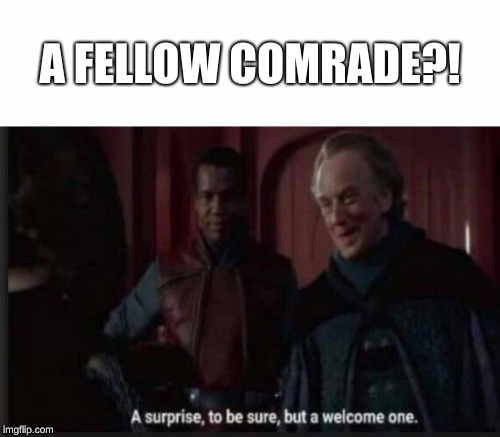 A FELLOW COMRADE?! | image tagged in a welcome surprise | made w/ Imgflip meme maker