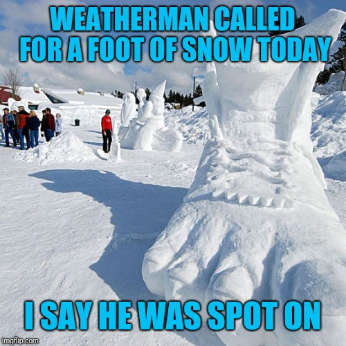 WEATHERMAN CALLED FOR A FOOT OF SNOW TODAY I SAY HE WAS SPOT ON | image tagged in weather,snow,forecast | made w/ Imgflip meme maker
