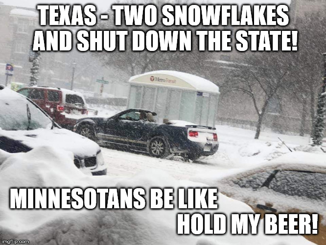 TEXAS - TWO SNOWFLAKES AND SHUT DOWN THE STATE! MINNESOTANS BE LIKE                                                              HOLD MY BEE | image tagged in snowstorm,blizzard,minnesota,texas,hold my beer | made w/ Imgflip meme maker