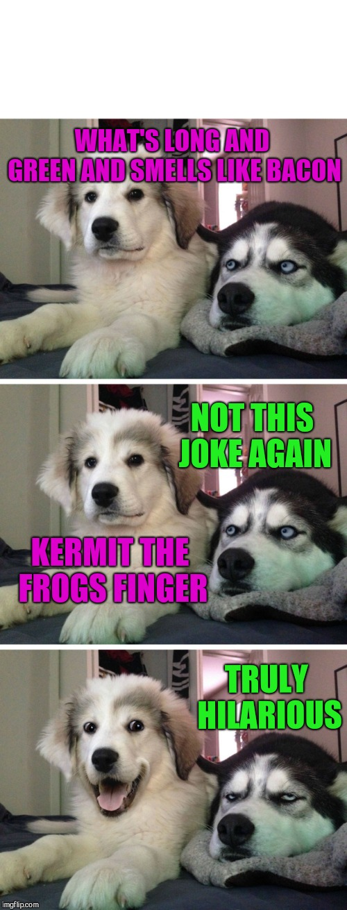 Dog bad joke | WHAT'S LONG AND GREEN AND SMELLS LIKE BACON NOT THIS JOKE AGAIN KERMIT THE FROGS FINGER TRULY HILARIOUS | image tagged in dog bad joke,crude humour,kermit,miss piggie | made w/ Imgflip meme maker