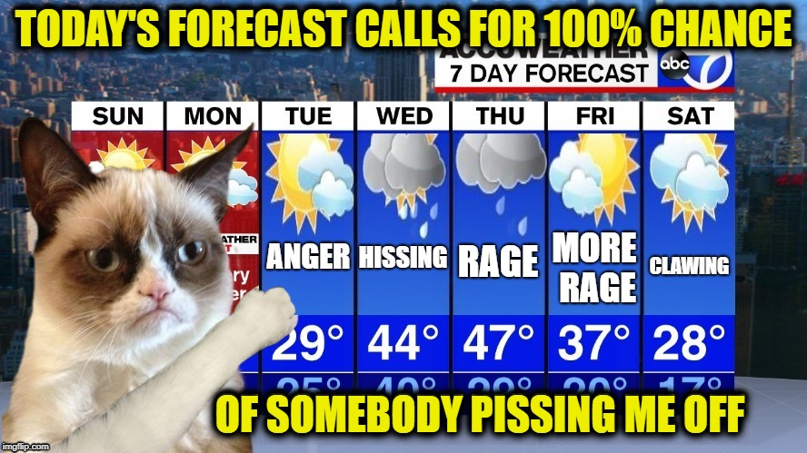 Grumpy Forecast | RAGE MORE RAGE ANGER HISSING CLAWING TODAY'S FORECAST CALLS FOR 100% CHANCE OF SOMEBODY PISSING ME OFF | image tagged in grumpy cat,cat,weather,funny memes | made w/ Imgflip meme maker