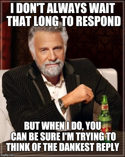 The Most Interesting Man In The World Meme | I DON'T ALWAYS WAIT THAT LONG TO RESPOND BUT WHEN I DO, YOU CAN BE SURE I'M TRYING TO THINK OF THE DANKEST REPLY | image tagged in memes,the most interesting man in the world | made w/ Imgflip meme maker