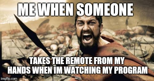 Remote Hogging Wars | ME WHEN SOMEONE TAKES THE REMOTE FROM MY HANDS WHEN IM WATCHING MY PROGRAM | image tagged in memes,sparta leonidas | made w/ Imgflip meme maker