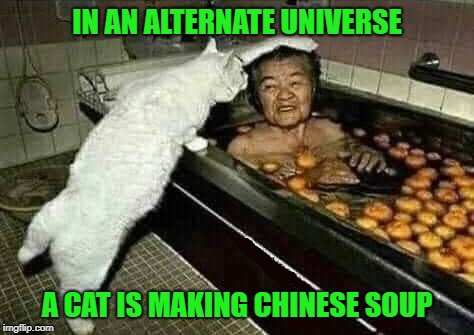 Stranger things have probably happened!!! | IN AN ALTERNATE UNIVERSE A CAT IS MAKING CHINESE SOUP | image tagged in chinese soup,memes,cats,funny,alternate universe,animals | made w/ Imgflip meme maker