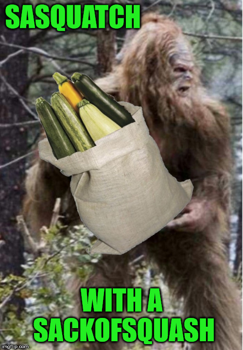 Sasquatch spotted coming home from shopping | SASQUATCH WITH A SACKOFSQUASH | image tagged in sasquatch,memes,squash,shopping,what if i told you,spotted | made w/ Imgflip meme maker