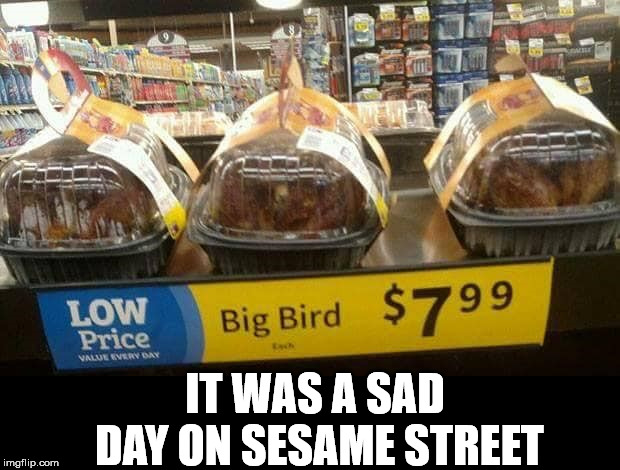 Sure gonna miss the big fella | IT WAS A SAD DAY ON SESAME STREET | image tagged in bird,sesame street | made w/ Imgflip meme maker