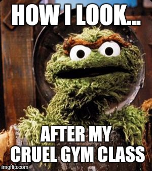 Oscar the Grouch | HOW I LOOK... AFTER MY CRUEL GYM CLASS | image tagged in oscar the grouch | made w/ Imgflip meme maker