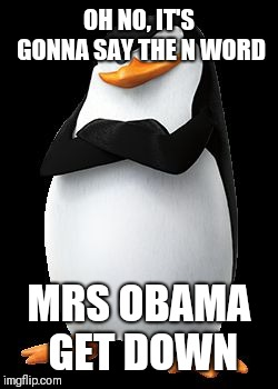 Skipper | OH NO, IT'S GONNA SAY THE N WORD MRS OBAMA GET DOWN | image tagged in skipper | made w/ Imgflip meme maker