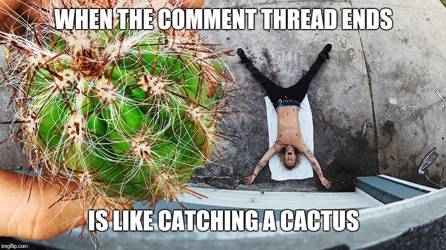 End of the Thread Week | March 7-13 | A BeyondTheComments Event |  WHEN THE COMMENT THREAD ENDS; IS LIKE CATCHING A CACTUS | image tagged in cactus catch,endofthread,beyondthecomments,palringo,btc | made w/ Imgflip meme maker