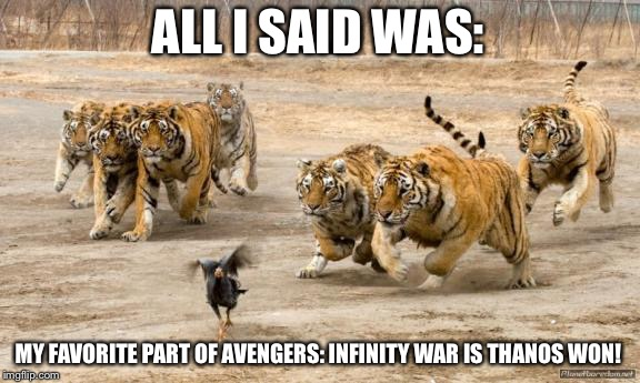 Angry tigers chase bird | ALL I SAID WAS: MY FAVORITE PART OF AVENGERS: INFINITY WAR IS THANOS WON! | image tagged in tigers chasing,infinity war | made w/ Imgflip meme maker