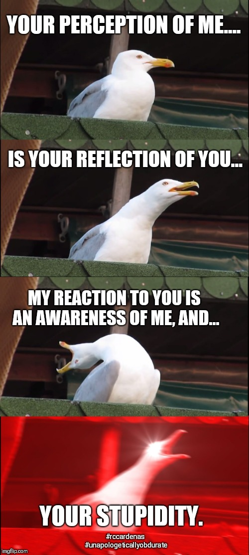Perception | YOUR PERCEPTION OF ME.... IS YOUR REFLECTION OF YOU... MY REACTION TO YOU IS AN AWARENESS OF ME, AND... YOUR STUPIDITY. #rccardenas #unapolo | image tagged in perception,reflection,awareness,reaction,stupidity,sarcasm | made w/ Imgflip meme maker