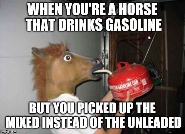 WHEN YOU'RE A HORSE THAT DRINKS GASOLINE; BUT YOU PICKED UP THE MIXED INSTEAD OF THE UNLEADED | image tagged in horse drinking gasoline,unleaded,gasoline | made w/ Imgflip meme maker