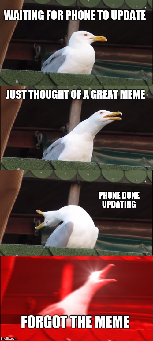 Inhaling Seagull | WAITING FOR PHONE TO UPDATE JUST THOUGHT OF A GREAT MEME PHONE DONE UPDATING FORGOT THE MEME | image tagged in memes,inhaling seagull | made w/ Imgflip meme maker