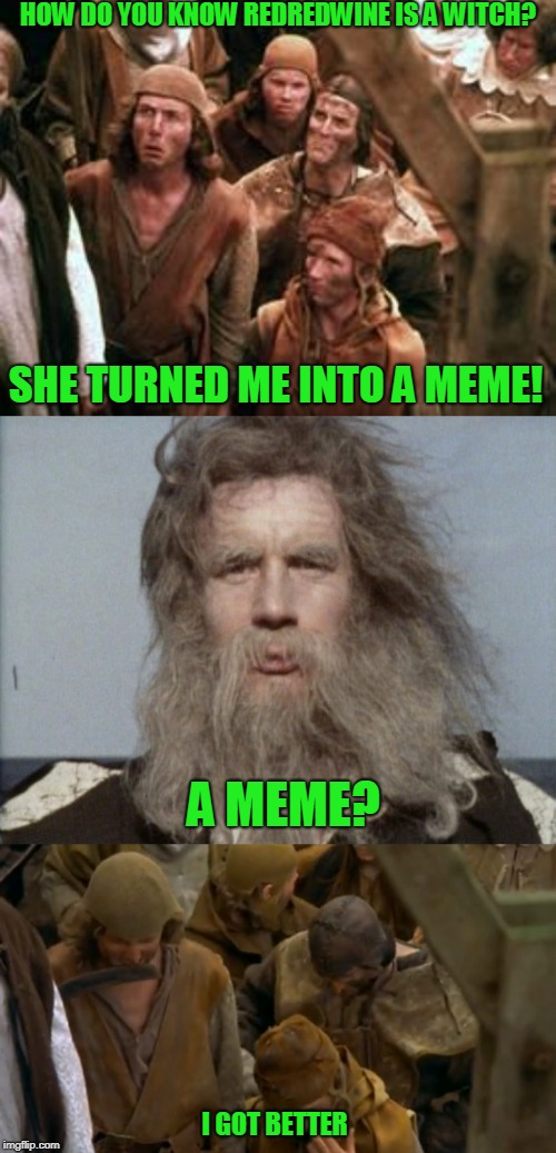 Gone, but not forgotten (hope you are still lurking!) | HOW DO YOU KNOW REDREDWINE IS A WITCH? I GOT BETTER SHE TURNED ME INTO A MEME! A MEME? | image tagged in monty python,redredwine | made w/ Imgflip meme maker