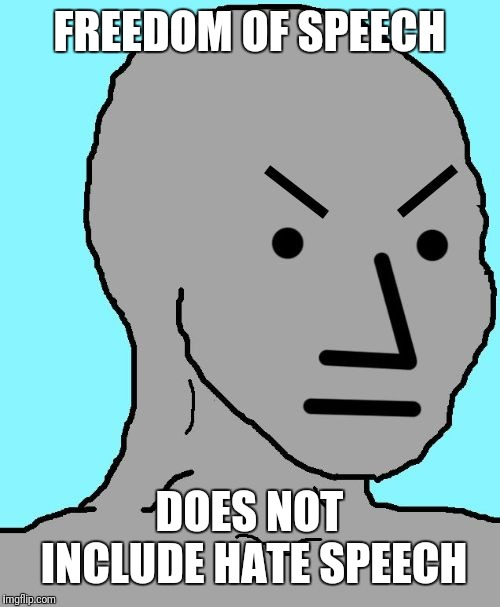 Angry NPC | FREEDOM OF SPEECH DOES NOT INCLUDE HATE SPEECH | image tagged in angry npc | made w/ Imgflip meme maker