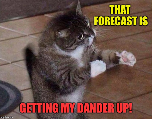 THAT FORECAST IS GETTING MY DANDER UP! | made w/ Imgflip meme maker