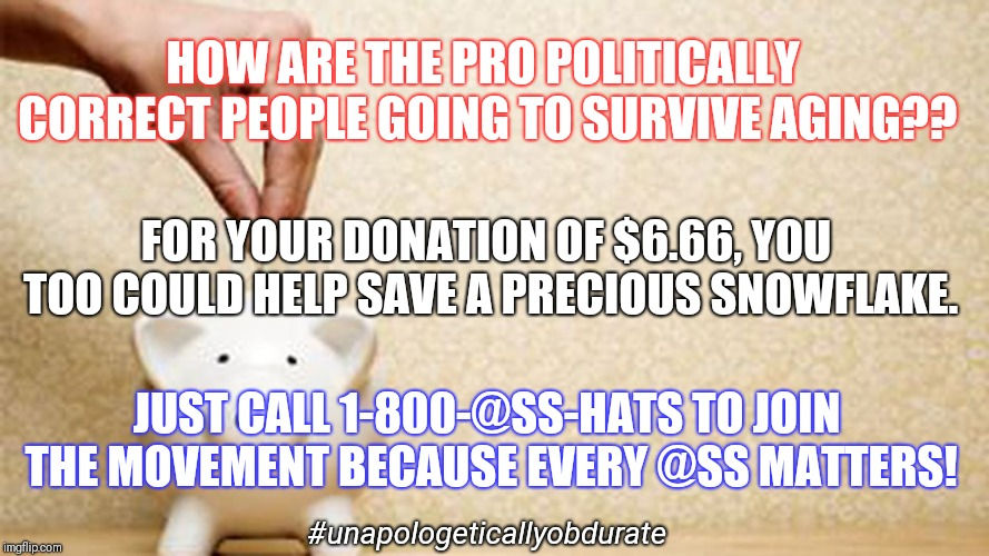 Save A Precious Snowflake  | HOW ARE THE PRO POLITICALLY CORRECT PEOPLE GOING TO SURVIVE AGING?? FOR YOUR DONATION OF $6.66, YOU TOO COULD HELP SAVE A PRECIOUS SNOWFLAKE | image tagged in donate,precious,snowflake,save the earth,psa,ass | made w/ Imgflip meme maker