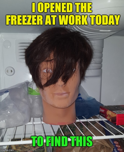 Here's what I have to deal with at work sometimes | I OPENED THE FREEZER AT WORK TODAY TO FIND THIS | image tagged in coworkers,severed head,freezer,wtf | made w/ Imgflip meme maker